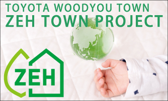 ZEH TOWN PROJECT